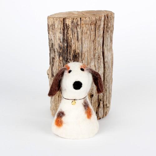 Eiwarmer Hond